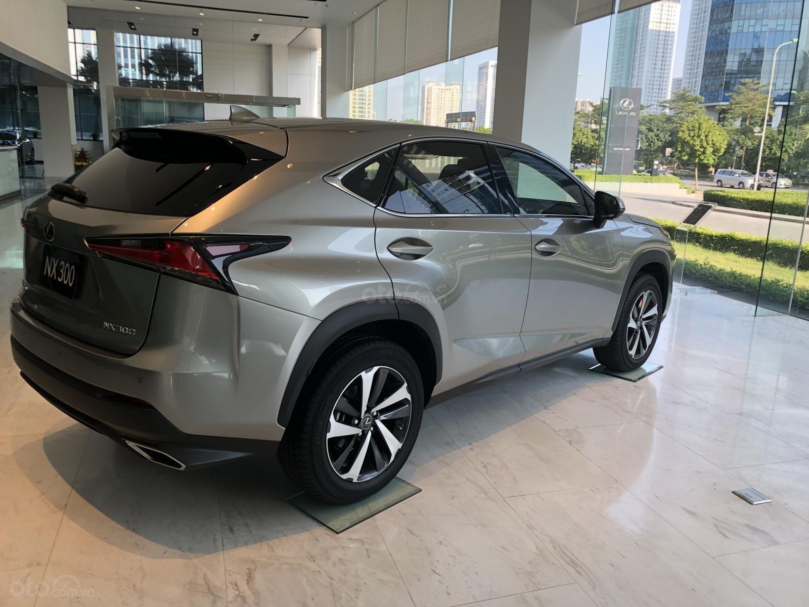 Bán xe Lexus NX300 2020 ưu đãi đặc biệt (4)