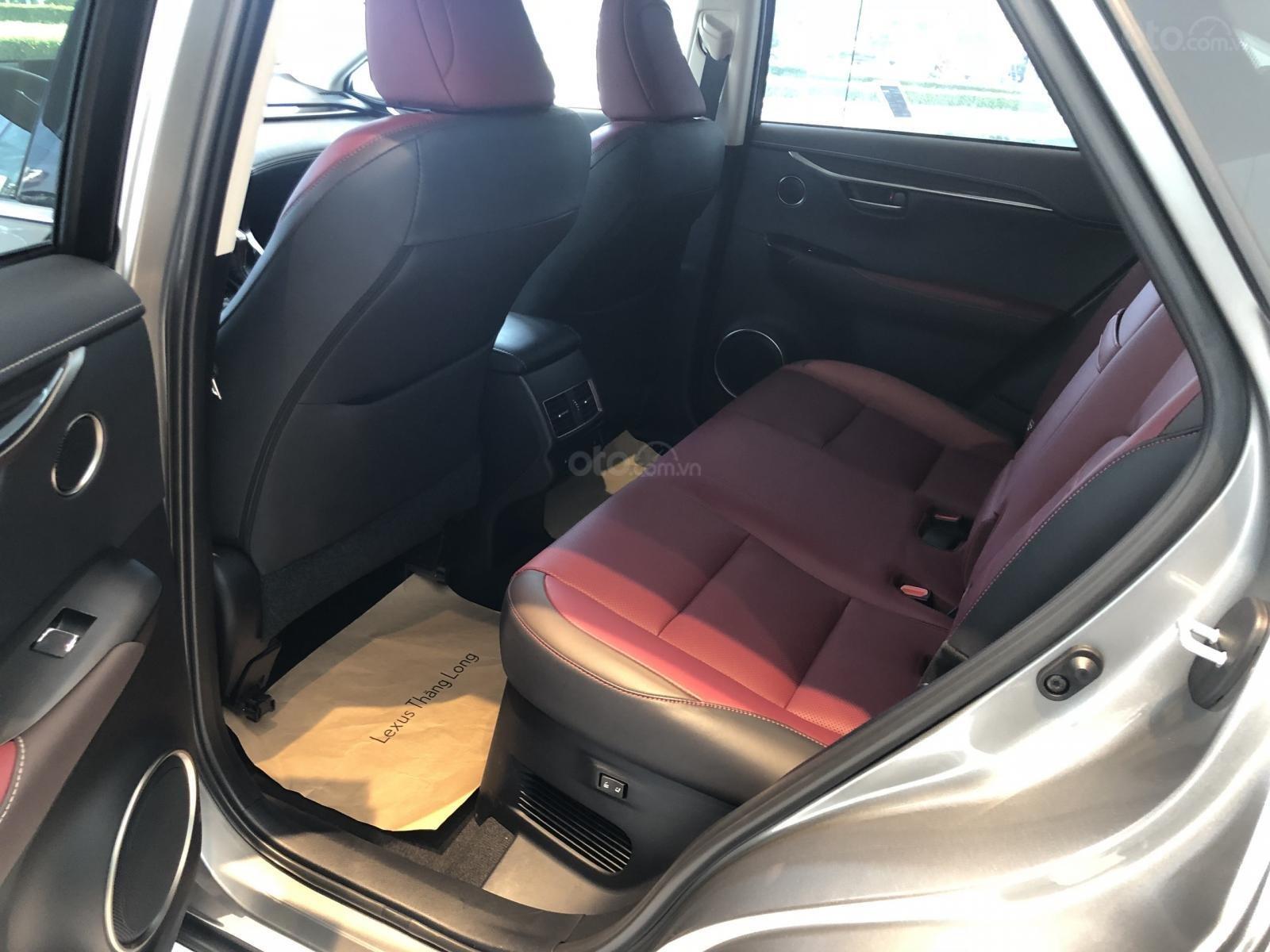 Bán xe Lexus NX300 2020 ưu đãi đặc biệt (8)