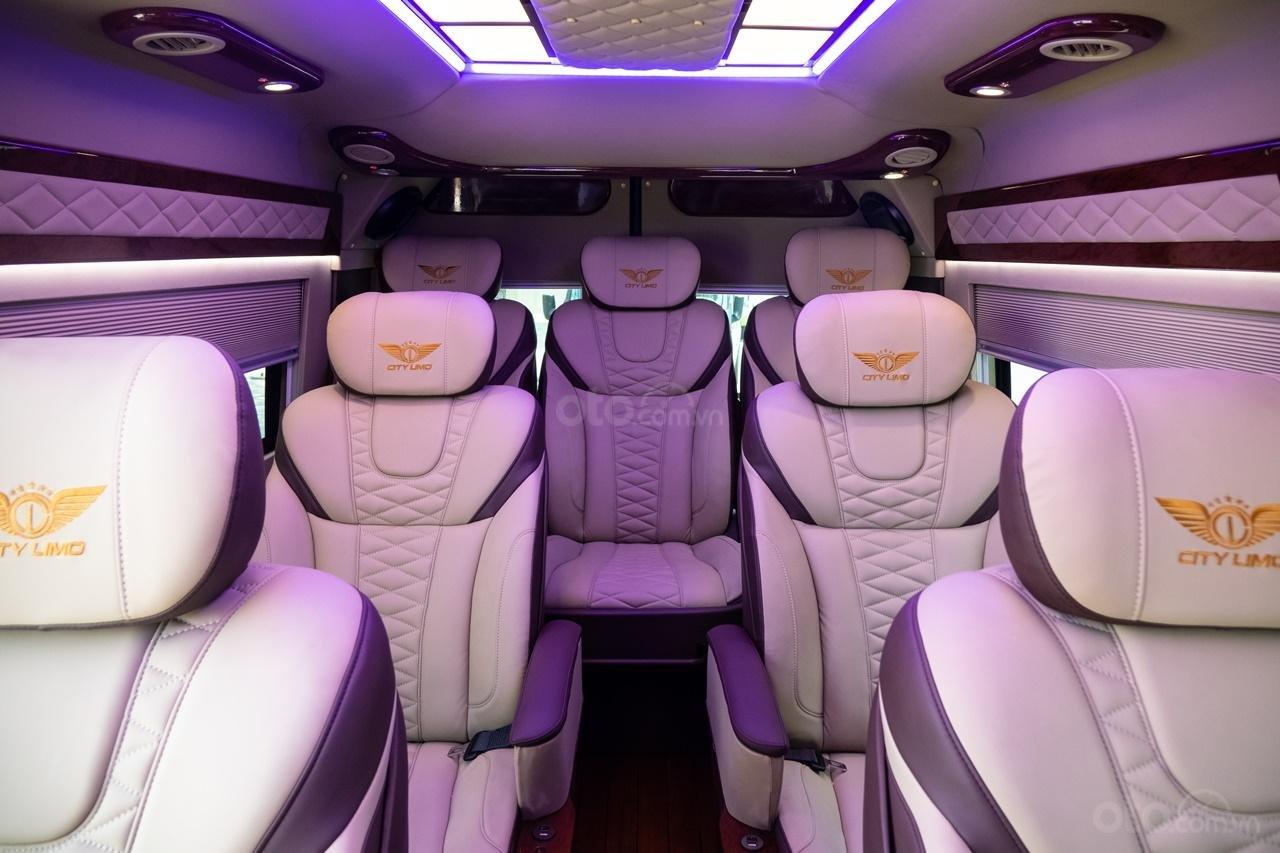 Cần bán Ford Transit Limousine cao cấp đời 2020, màu đen, giá tốt nhất thị trường (11)