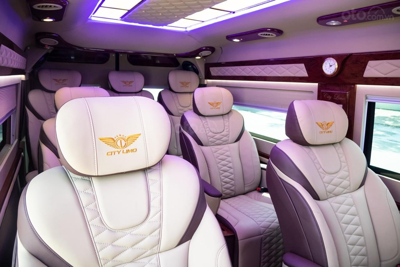 Cần bán Ford Transit Limousine cao cấp đời 2020, màu đen, giá tốt nhất thị trường (10)