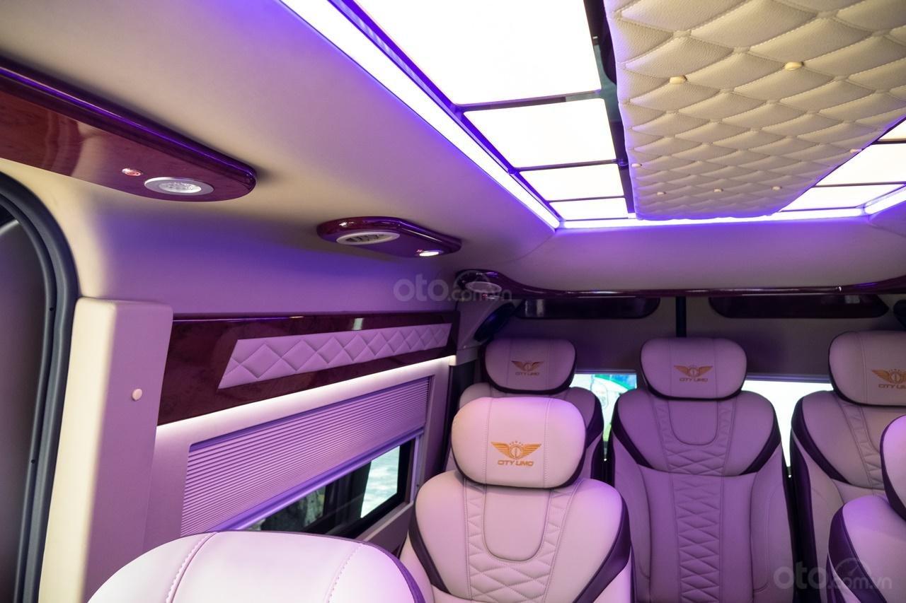 Cần bán Ford Transit Limousine cao cấp đời 2020, màu đen, giá tốt nhất thị trường (12)