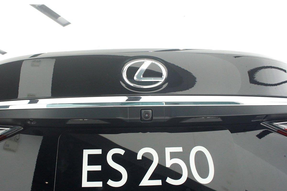 Lexus ES 250 2020 đã chốt giá tại Việt Nam, rẻ hơn Mercedes-Benz E350 AMG a20