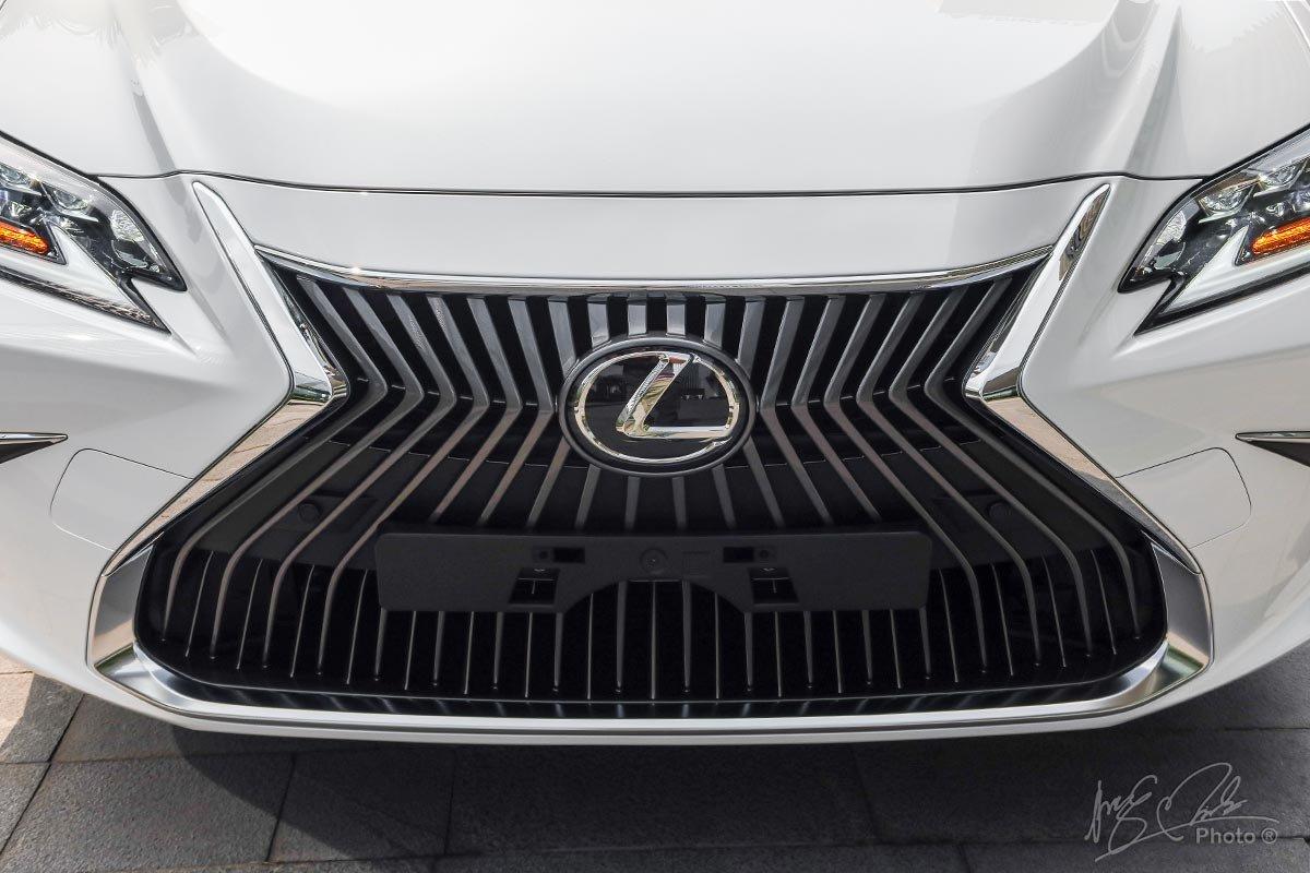 Ảnh chụp lưới tản nhiệt xe Lexus ES 250 2020