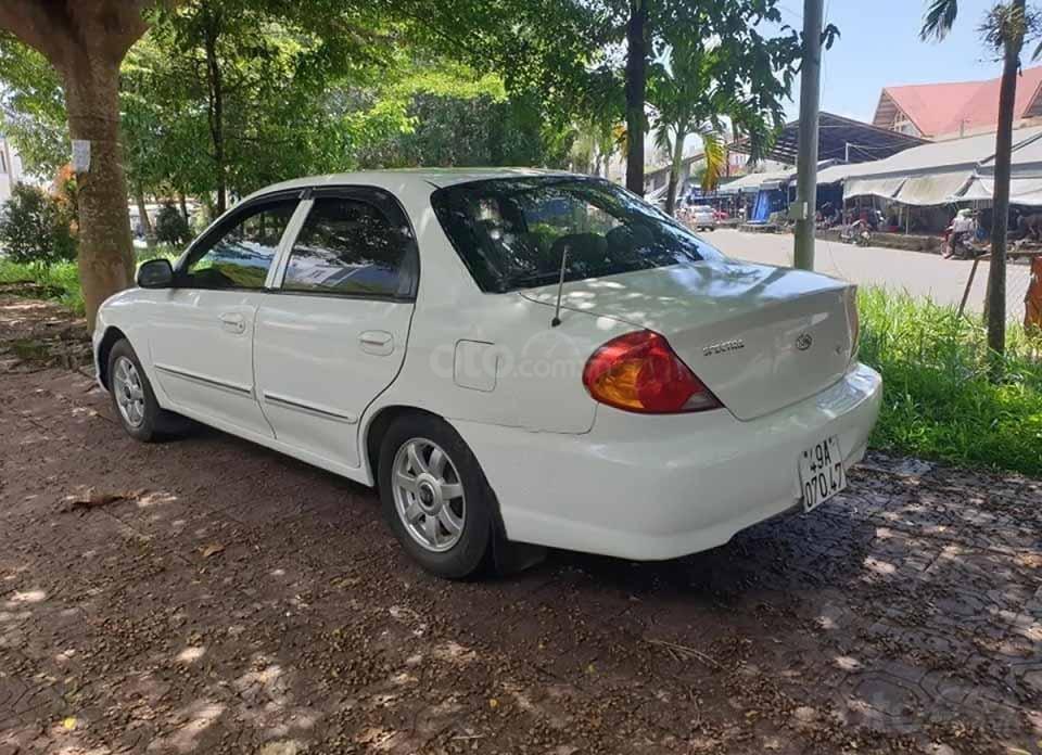 Bán Kia Spectra sản xuất năm 2004, màu trắng (2)