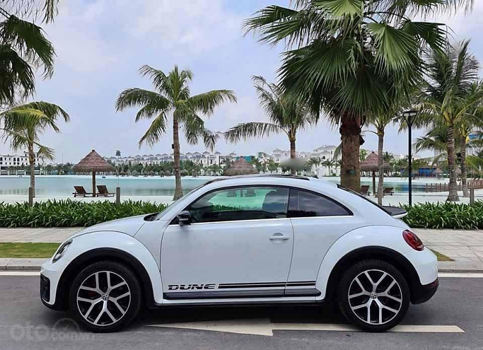 Cần bán xe Volkswagen Beetle Dune 2.0 đời 2018, màu trắng, nhập khẩu nguyên chiếc (5)