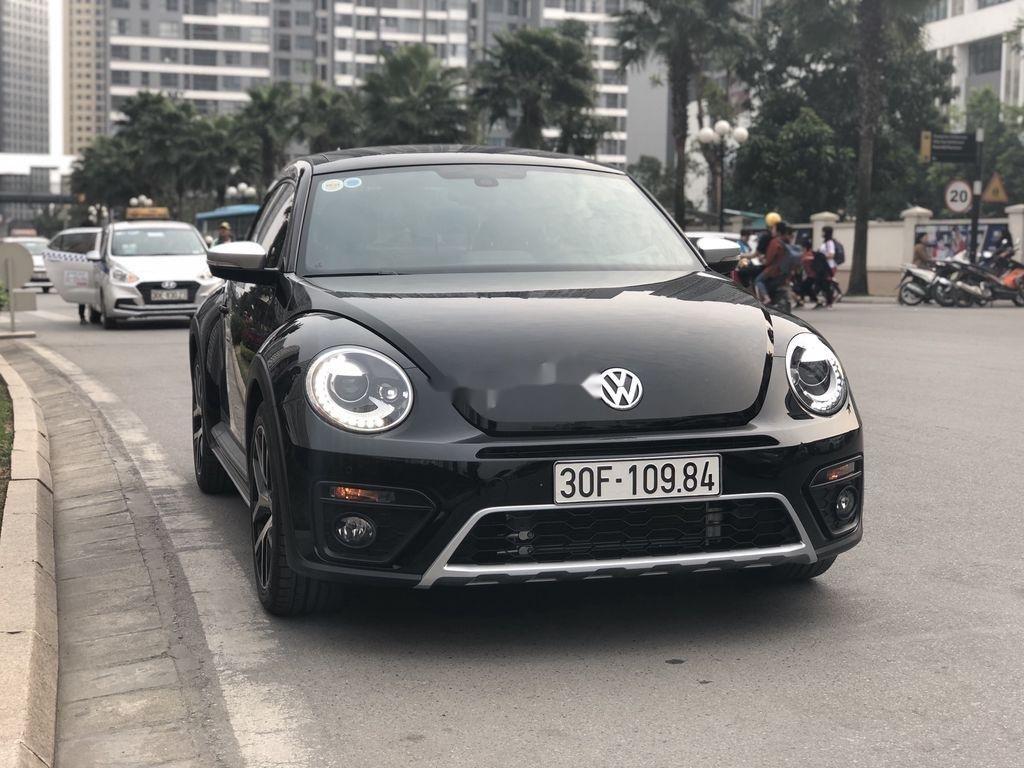 Cần bán Volkswagen Beetle năm sản xuất 2018, màu đen, xe nhập chính chủ (1)