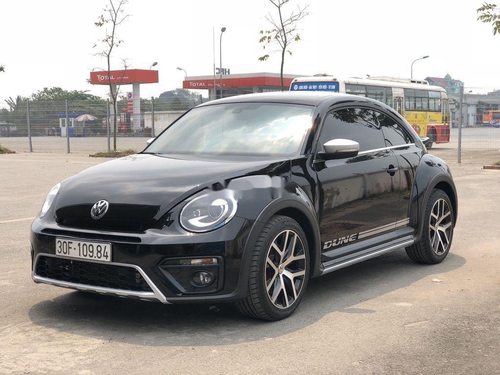 Cần bán Volkswagen Beetle năm sản xuất 2018, màu đen, xe nhập chính chủ (8)