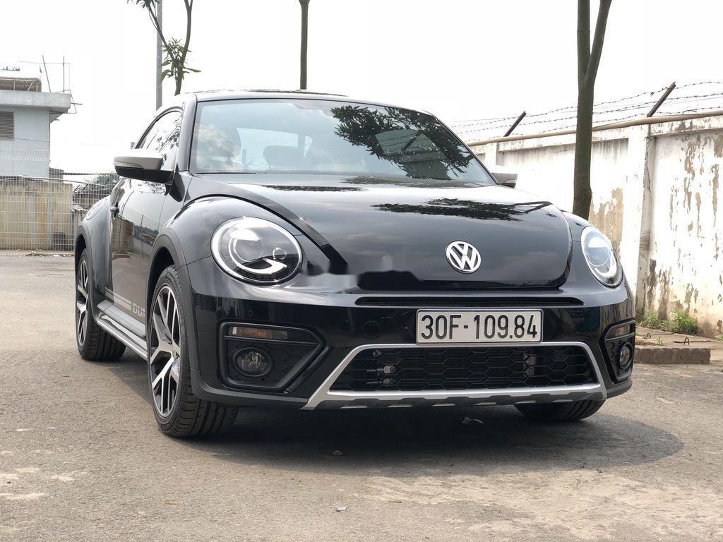 Cần bán Volkswagen Beetle năm sản xuất 2018, màu đen, xe nhập chính chủ (5)