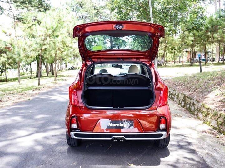Kia Morning giá rẻ nhất phân khúc chỉ từ 299 triệu, phù hợp với mọi gia đình hoặc chạy dịch vụ (3)