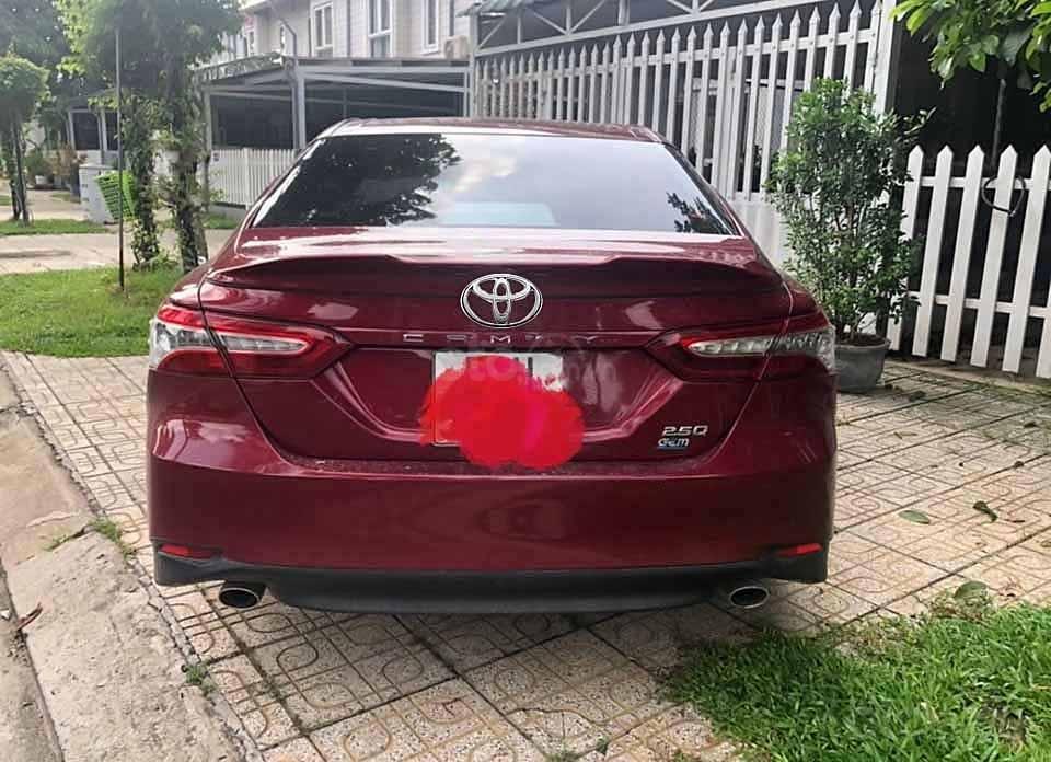 Cần bán xe Toyota Camry 2.5Q đời 2019, màu đỏ, xe nhập   (4)