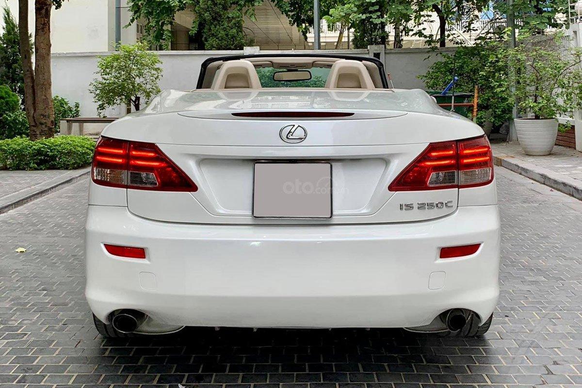 Thiết kế đuôi xe Lexus IS250C 2011 a2