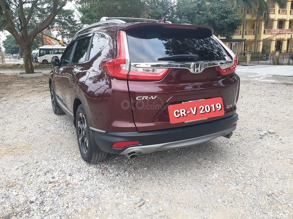 Bán Honda CR V đời 2019, màu đỏ mận, cực đẹp (2)