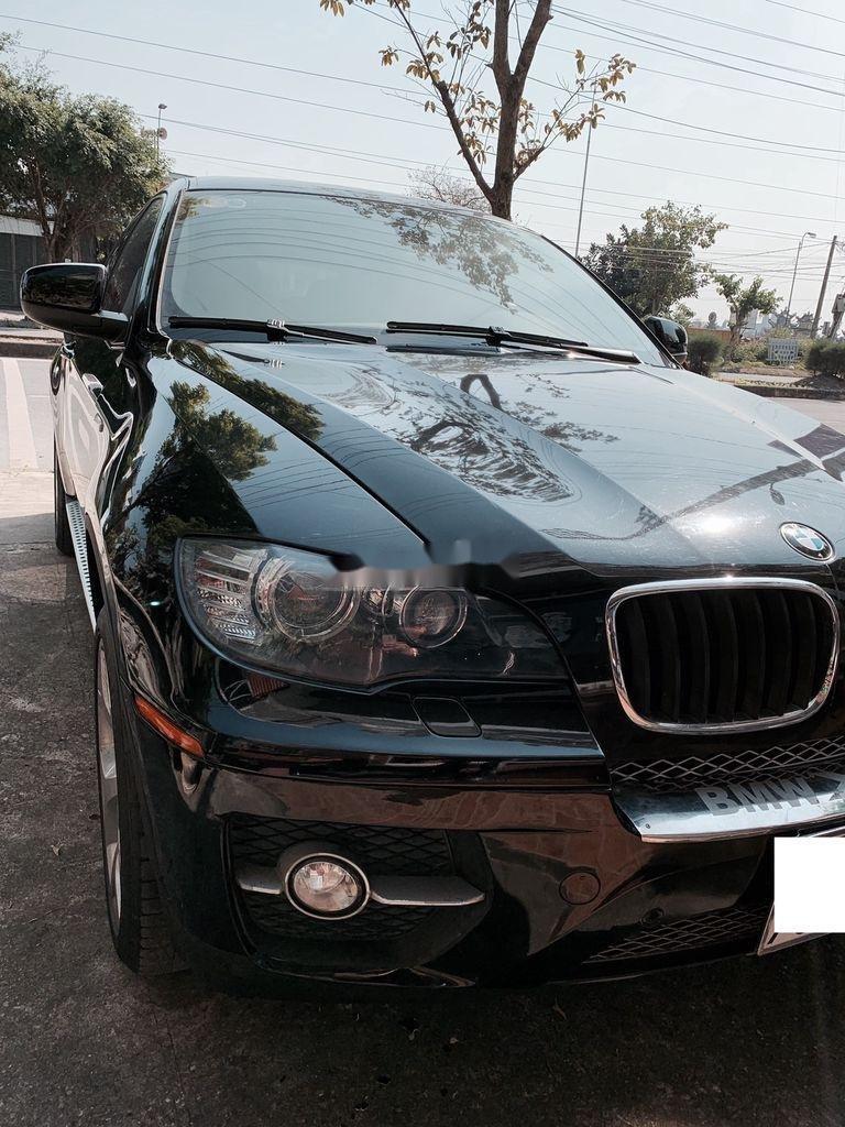 Cần bán lại xe BMW X6 năm 2009, màu đen, nhập khẩu, giá tốt (3)