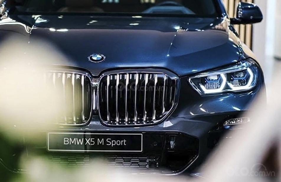 Bán xe BMW X5 xDrive40i M Sport sản xuất năm 2020, màu xanh lam, xe nhập (3)