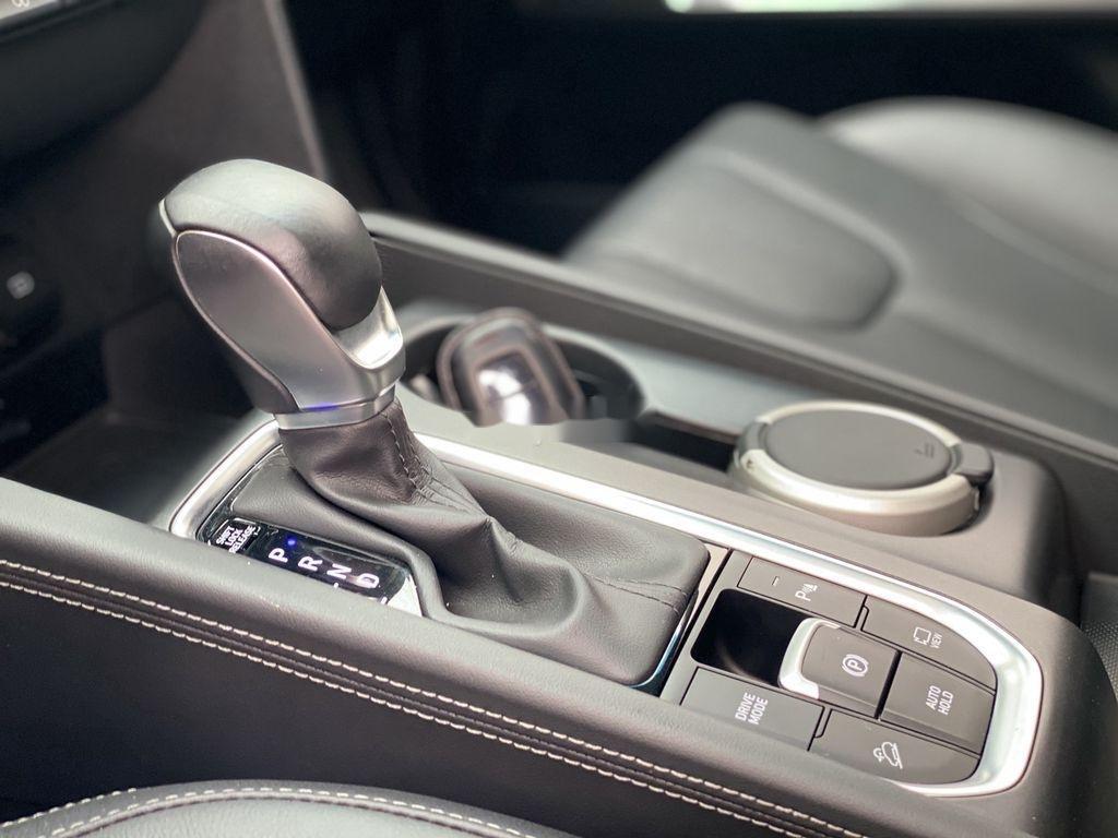 Bán Hyundai Santa Fe 2.2L AT 4WD năm 2019 (12)