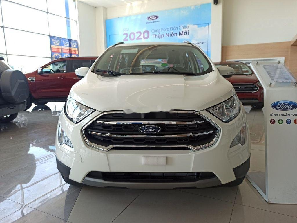 Bán xe Ford EcoSport đời 2021, màu trắng (1)