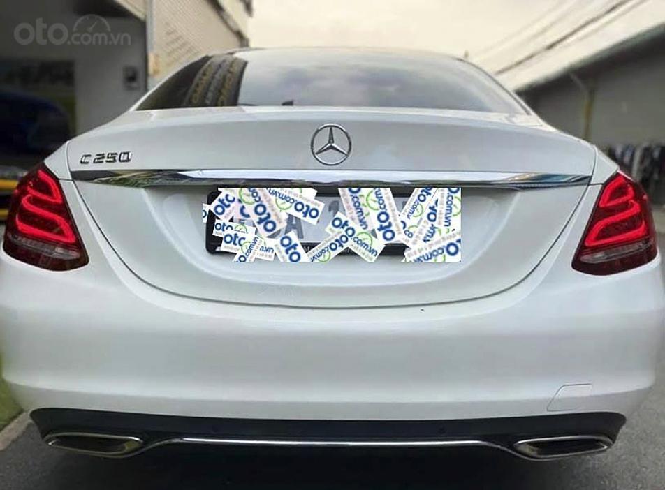 Bán Mercedes C250 Exclusive sản xuất 2016, màu trắng (4)