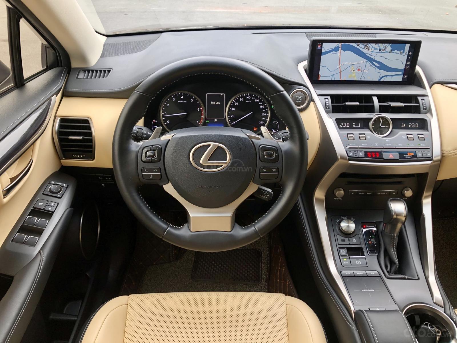 Cần bán xe Lexus NX300, sản xuất 2018 (5)
