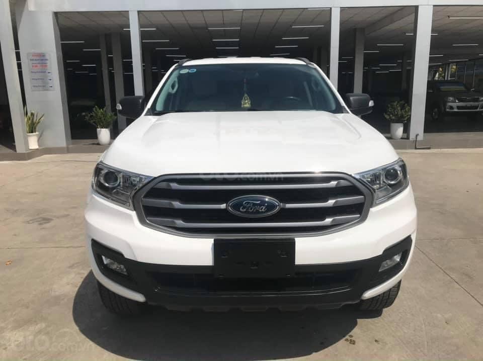 Cần bán Ford Everest Ambiente 2.0 đời 2019, màu trắng số sàn, giá tốt (1)