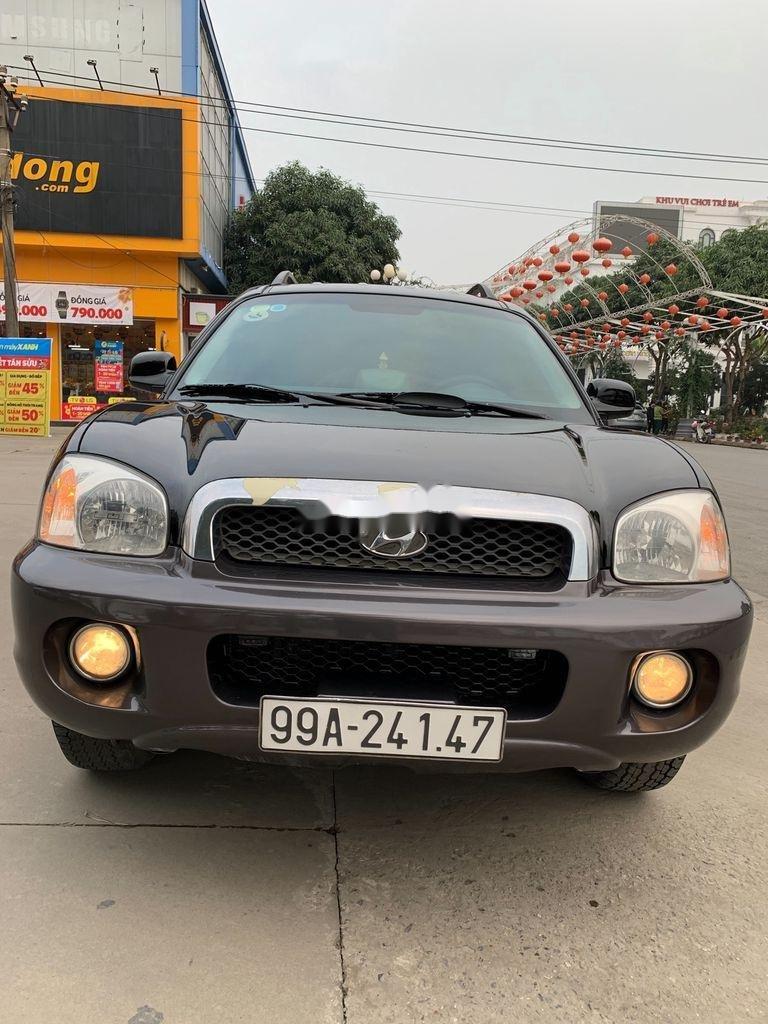 Cần bán xe Hyundai Santa Fe đời 2004, màu xám, nhập khẩu nguyên chiếc (1)
