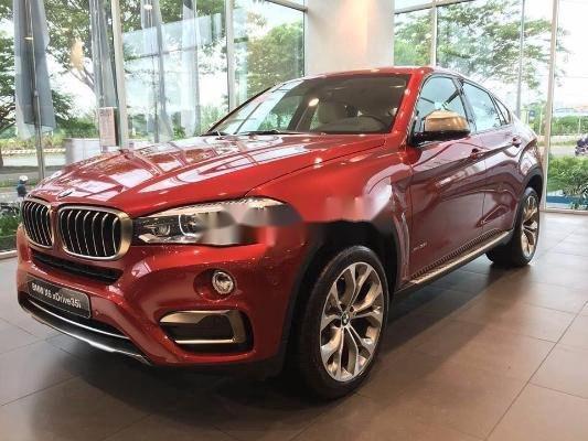 Cần bán gấp BMW X6 năm 2009, nhập khẩu nguyên chiếc còn mới, giá 789tr (1)