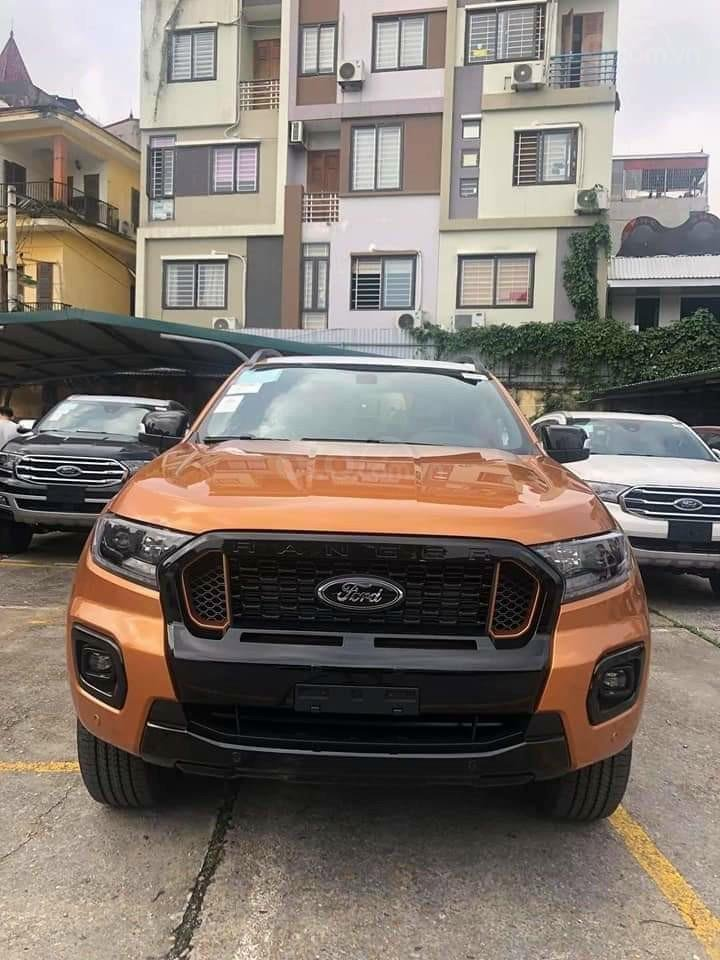 Western Ford An Giang (16)