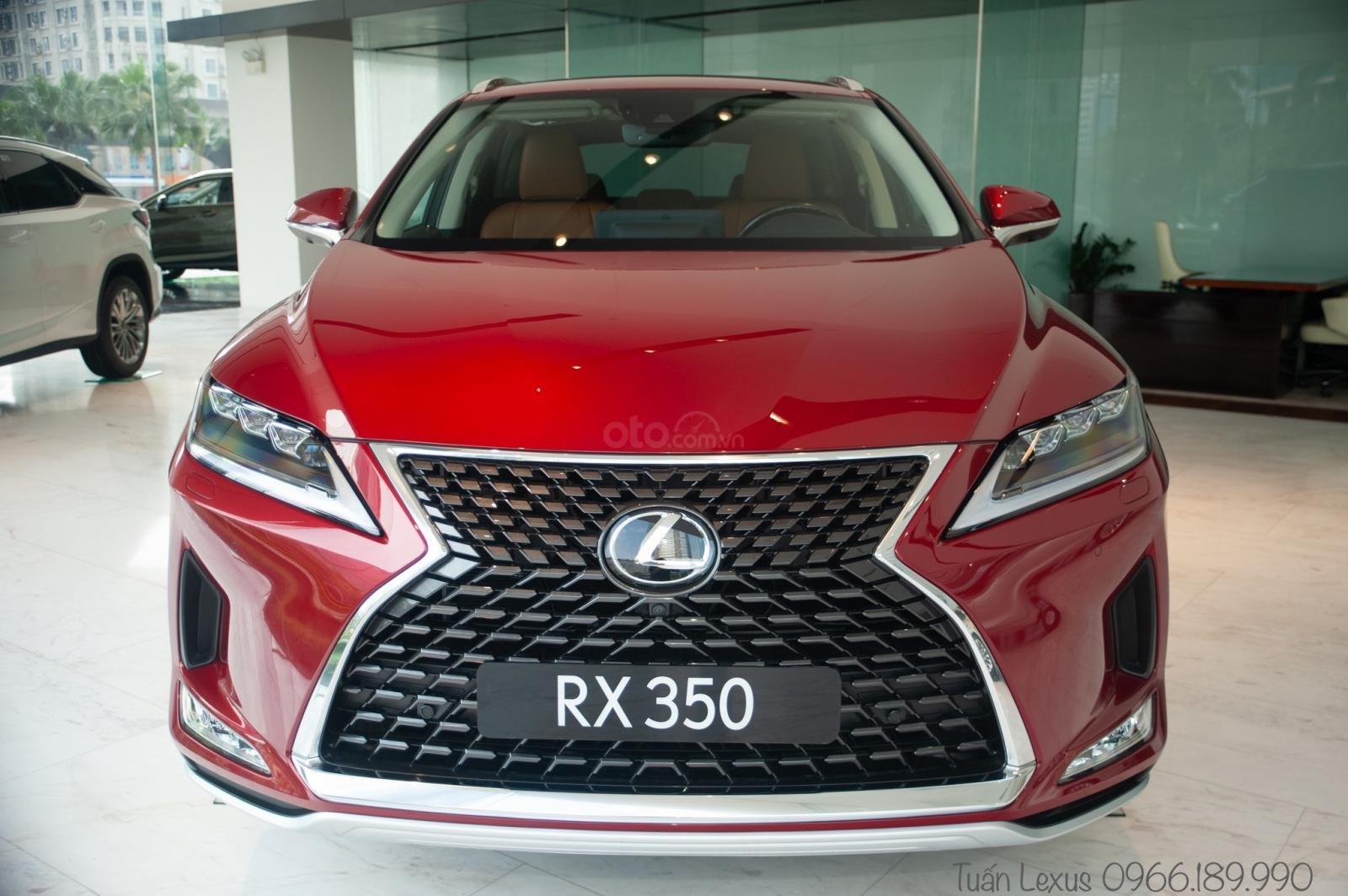 Lexus Thăng Long (3)