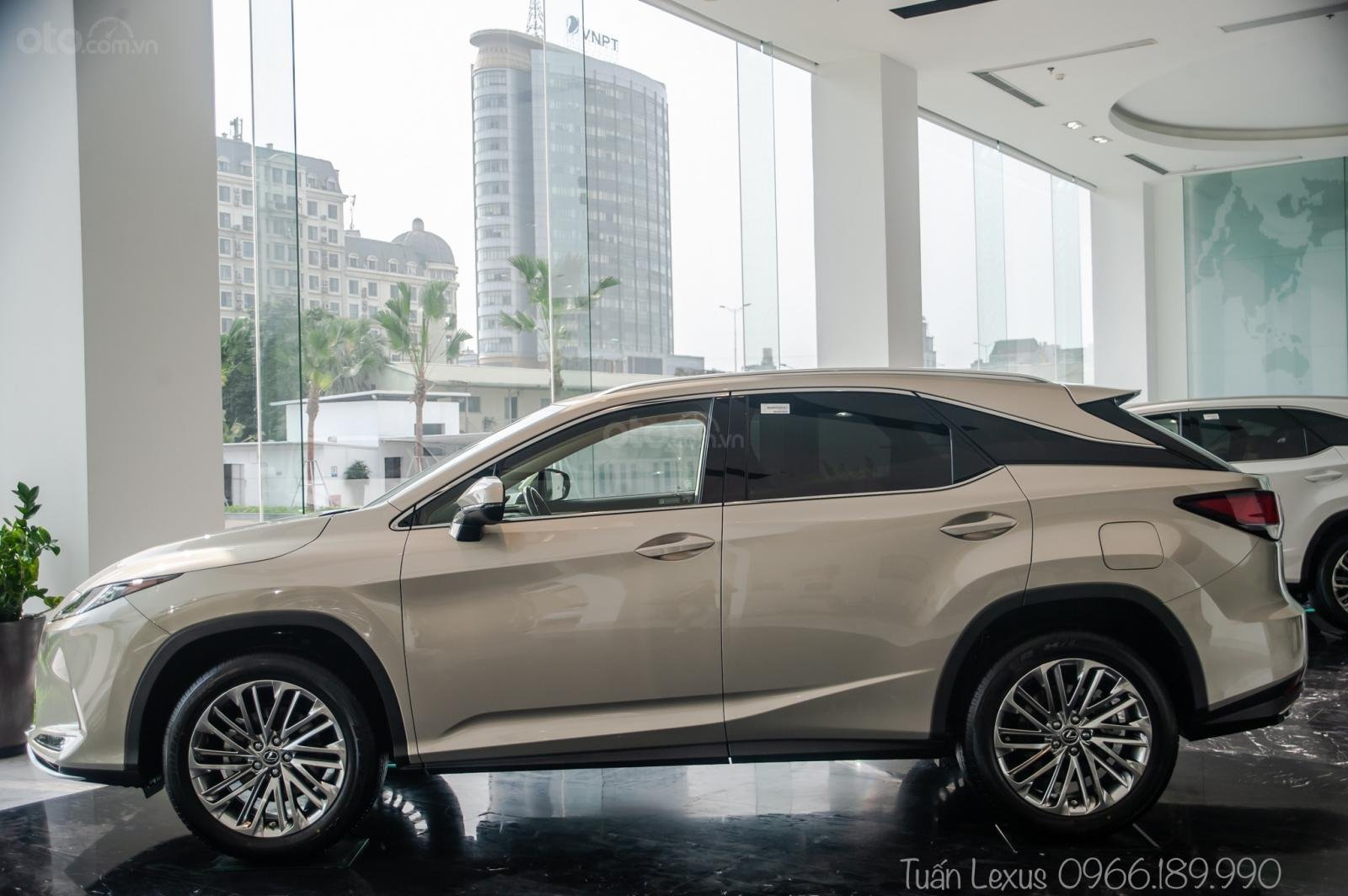 Lexus Thăng Long (9)