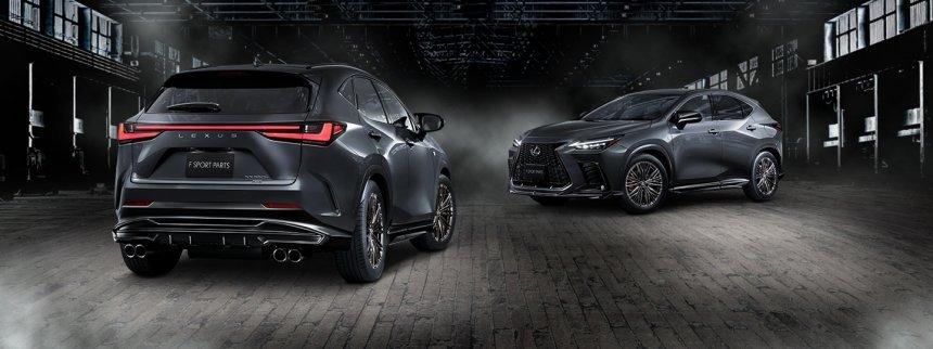 Lexus NX với phụ kiện TRD.