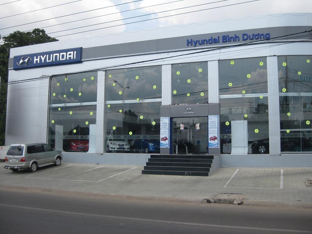 Hyundai Bình Dương  (24)