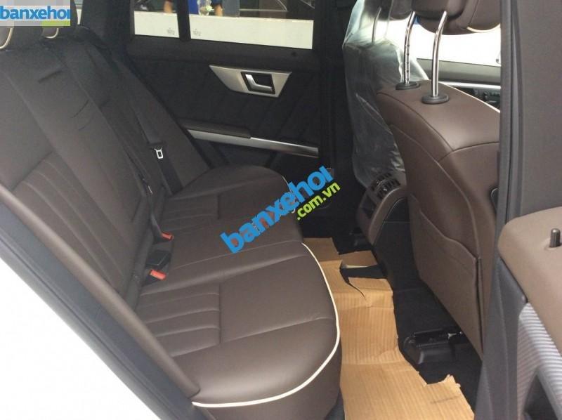 Xe Mercedes-Benz GLK Class GLK 250 AMG 2014-5