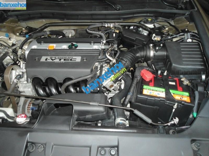 Xe Honda Accord  2010-8