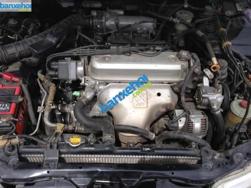 Xe Honda Accord  1996-7