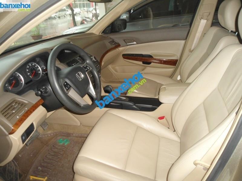 Xe Honda Accord  2010-4