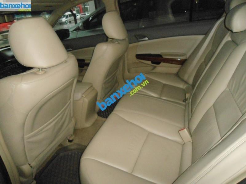 Xe Honda Accord  2010-5