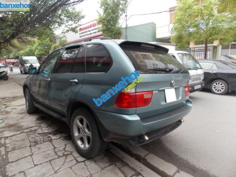Xe BMW X5 3.0 2003-9