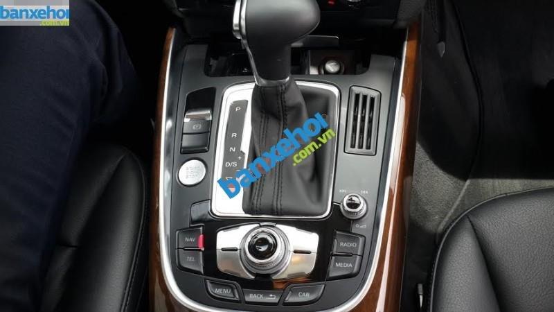 Xe Audi Q5  2014-4