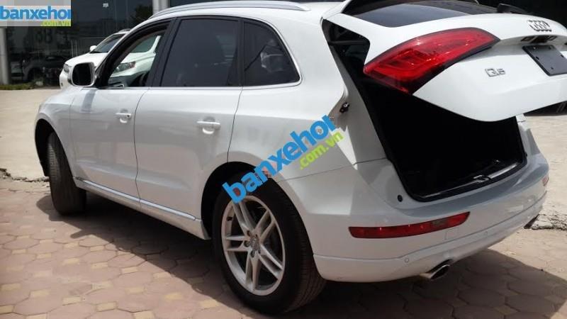 Xe Audi Q5  2014-2