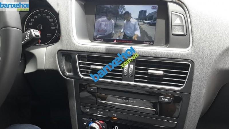 Xe Audi Q5  2014-3