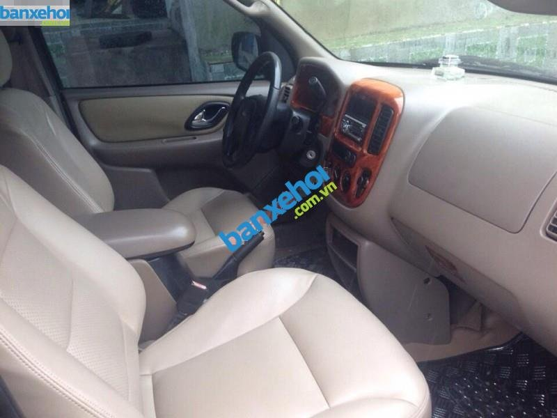 Xe Ford Escape 3.0 XLT 2004-7