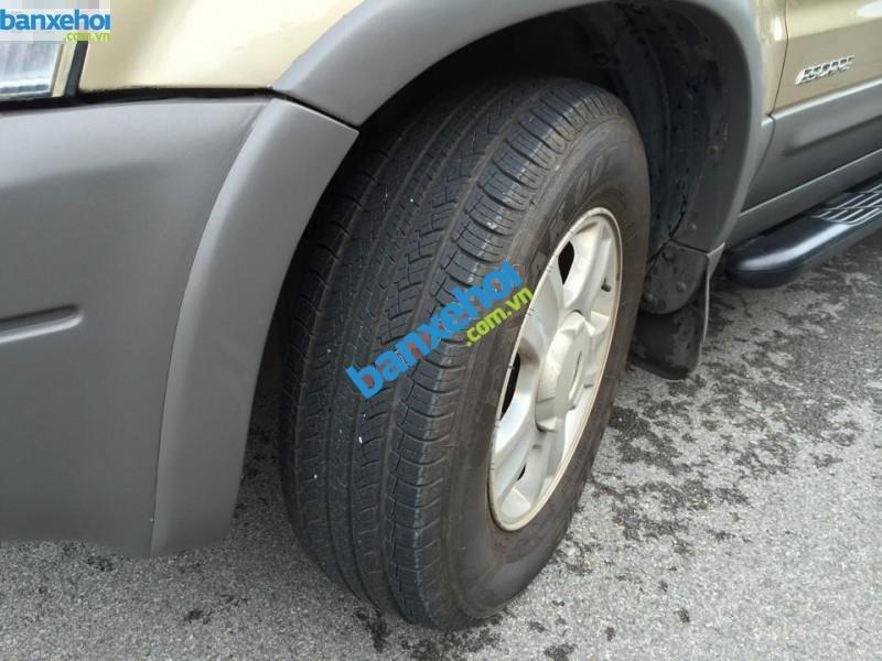 Xe Ford Escape 3.0 2002-6