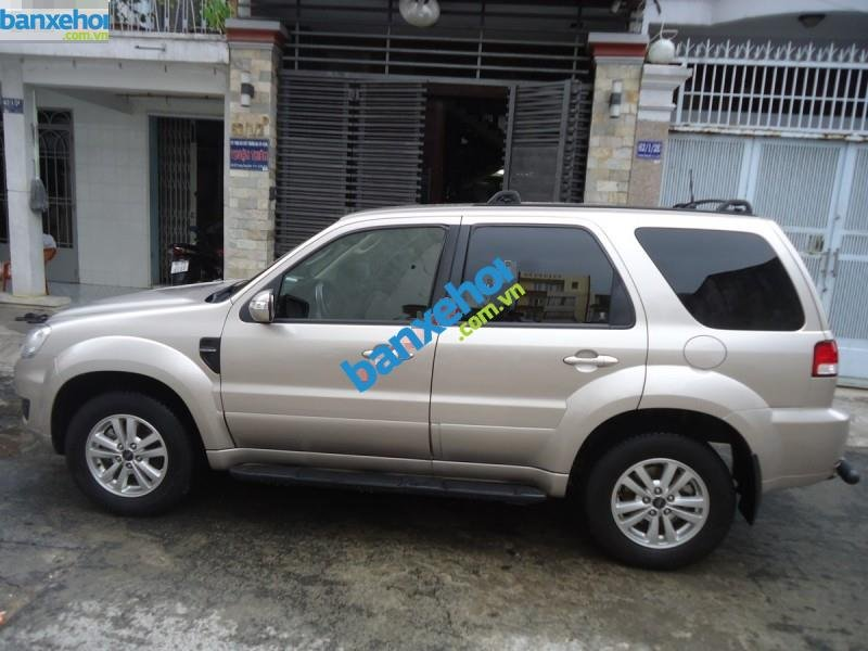 Xe Ford Escape XLT 4x4 2010-3