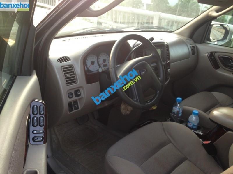 Xe Ford Escape 3.0 V6 2002-6
