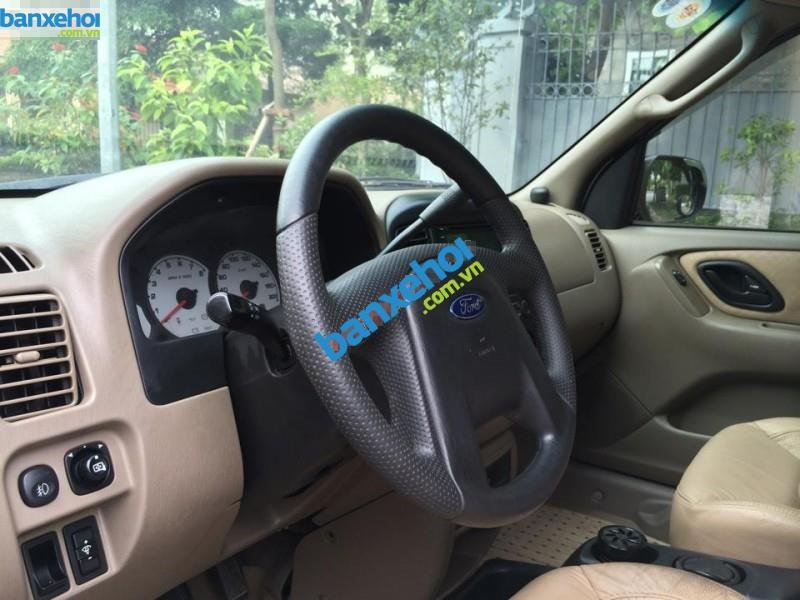 Xe Ford Escape 3.0 2002-8