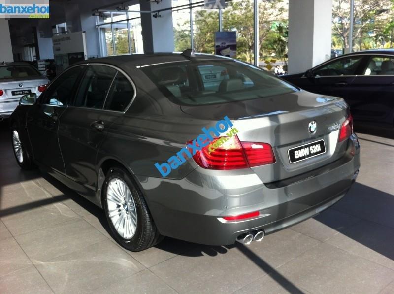 Xe BMW 5 Series 520i 2014-2