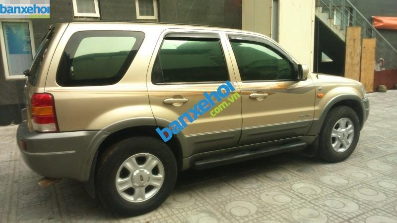 Xe Ford Escape 3.0 4X4 XLT 2004-5