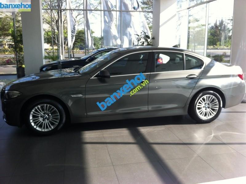 Xe BMW 5 Series 520i 2014-1