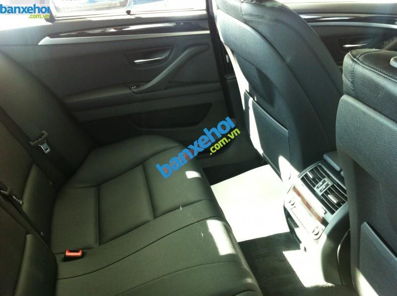Xe BMW 5 Series 520i 2014-4