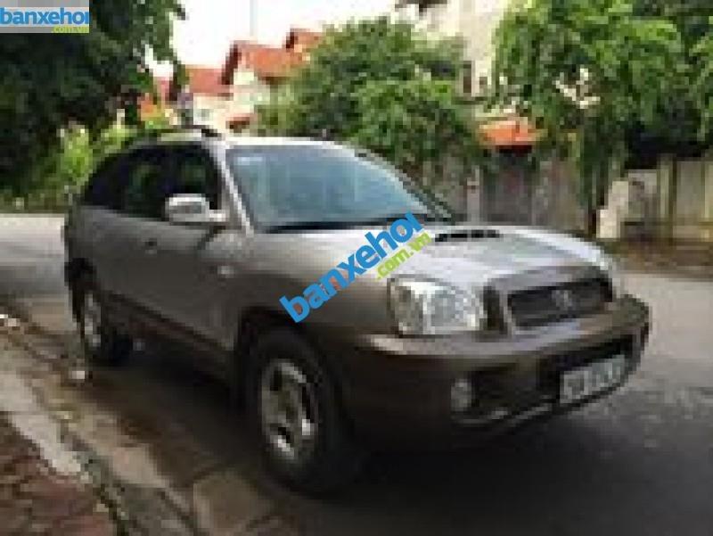 Xe Hyundai Santa Fe Gold 2003-1