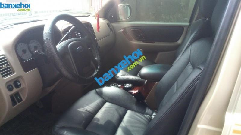 Xe Ford Escape 3.0 4X4 XLT 2004-6